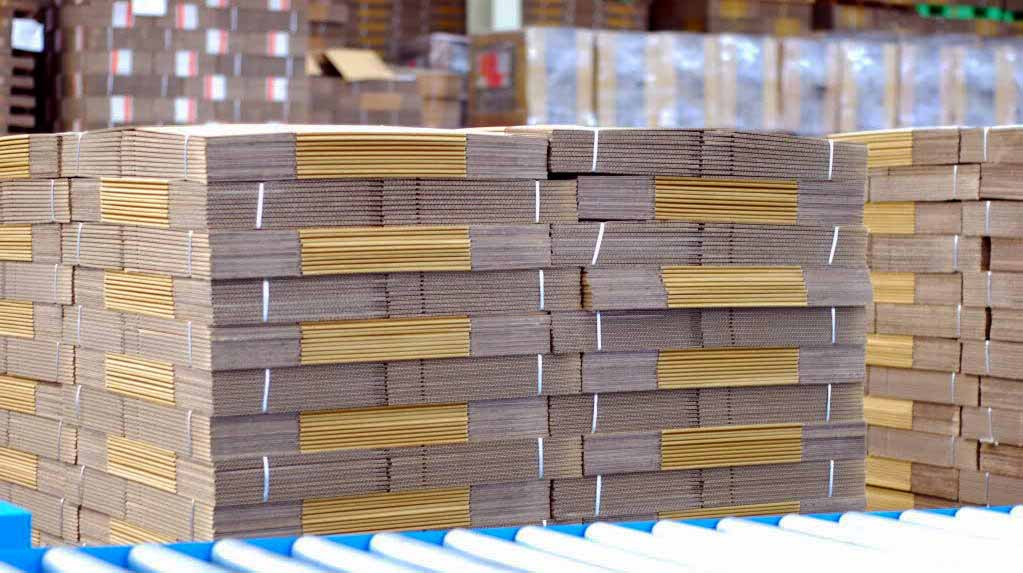 một trong những sản phẩm bao bì carton