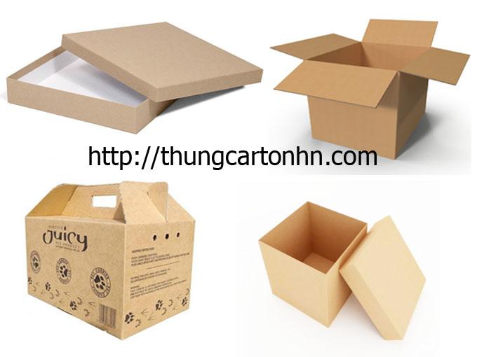 thùng carton thông thường, thùng carton nắp đậy, thùng bế, thùng carton âm dương